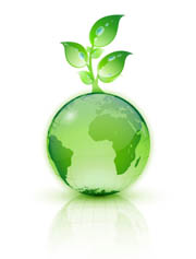 the environment greener than thou perc the property