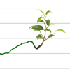 Growth is Green